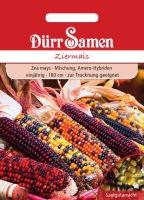 Zea mays Ziermais Mix