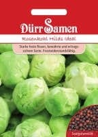 Rosenkohl Hilds Ideal